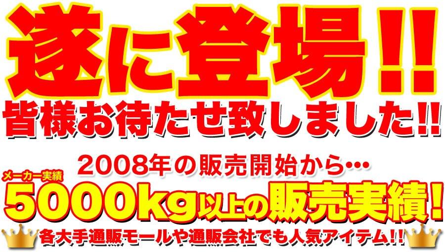 (北海道)(訳あり)高級チョコブラウニーどっさり1kg
