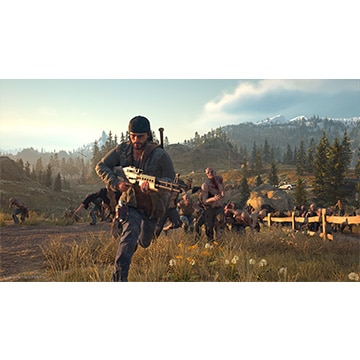 [PS4] Days Gone Value Selection