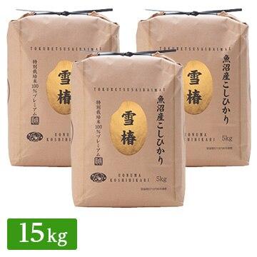 【送料無料】■◇新米 特別栽培米 令和3年産 新潟県 魚沼産 コシヒカリ 15kg(5kg×3袋)