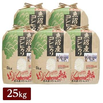 ■【精米】新米 令和2年産 新潟県 魚沼産 コシヒカリ 25kg(5kg×5袋)