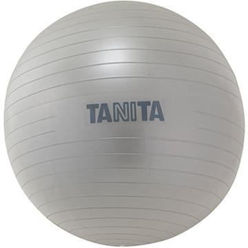 タニタ タニタサイズ ジムボール シルバー TS962