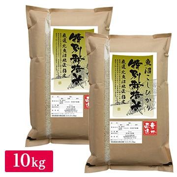遠藤米穀 産地直送 令和2年産 特別栽培米 魚沼産コシヒカリ10kg(5kg×2)