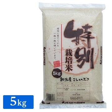 遠藤米穀 産地直送 令和2年産 特別栽培米 新潟産こしいぶき5kg