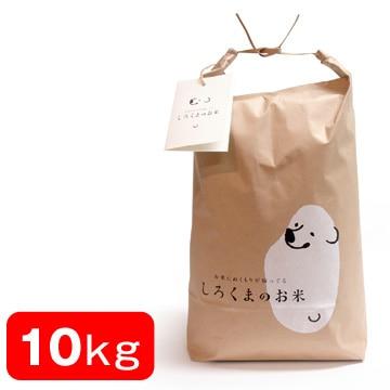特別栽培米 しろくまの米(新潟産コシヒカリ精米/10kg)