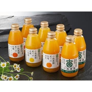 S56 実りの収穫 4種の柑橘ジュース 和歌山県