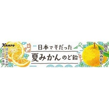 【10個入り】カンロ 日本でそだった夏みかん のど飴 11粒