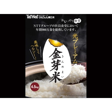 東洋ライス 【東京】金芽米 4.5kg×2袋