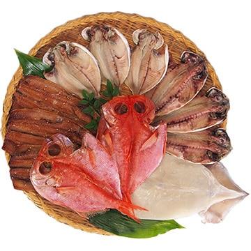 小木曽商店 【静岡】小木曽商店 干物5種類 (計12枚)詰合せ