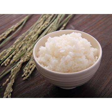 田中米穀 【新潟】新潟長岡産コシヒカリ 5kg(令和元年産)