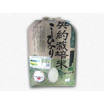 渡邉和哉商店 【栃木】契約栽培米コシヒカリ5kg