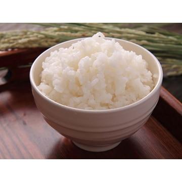田中米穀 【新潟】新潟産こしいぶき 5kg(令和元年産)