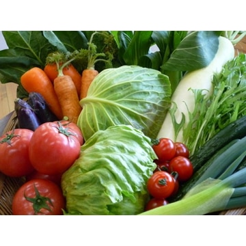くらぶち草の会 【群馬】 季節の野菜ときのこおまかせセット(8~10品目)