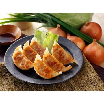 フタバ食品 (栃木)宇都宮餃子とんきっき 野菜餃子