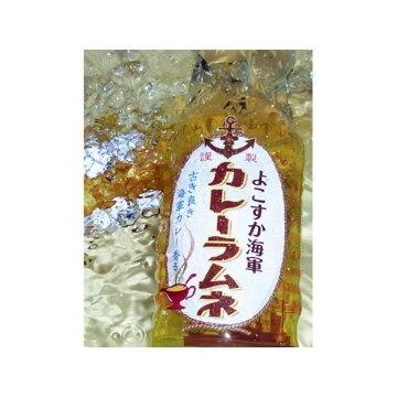 調味商事 【神奈川】よこすか海軍カレーラムネ(200ml 30本)