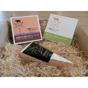 【送料無料】十勝野フロマージュ (北海道)十勝野フロマージュ 特選 チーズセット プランA