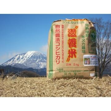 渡邉和哉商店 (栃木)滋養米(無農薬・自然農法コシヒカリ)