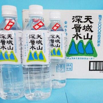 大晃わさびの駅 (静岡)天城山深層水 500 24本セット