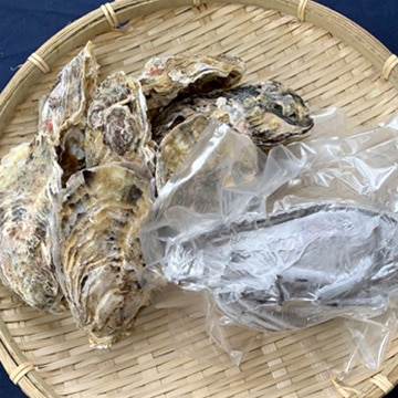 伊勢志摩冷凍 奉納伊勢海老280g 鳥羽浦村産セル牡蠣特大7個セット TW2080183353