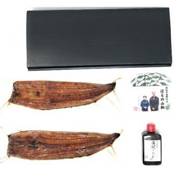浜松三星 浜名湖産うなぎ約140g 2本 ギフト箱