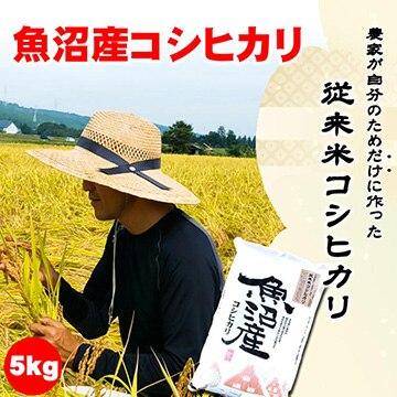 越季 (新潟)新潟・魚沼産新米コシヒカリ5kg(令和2年産)農家が自分のためだけに作る従来米
