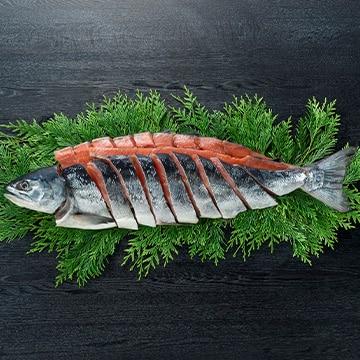 ギフト商社 株式会社FUJI 北海道日高産 新巻鮭姿切身1.7kg