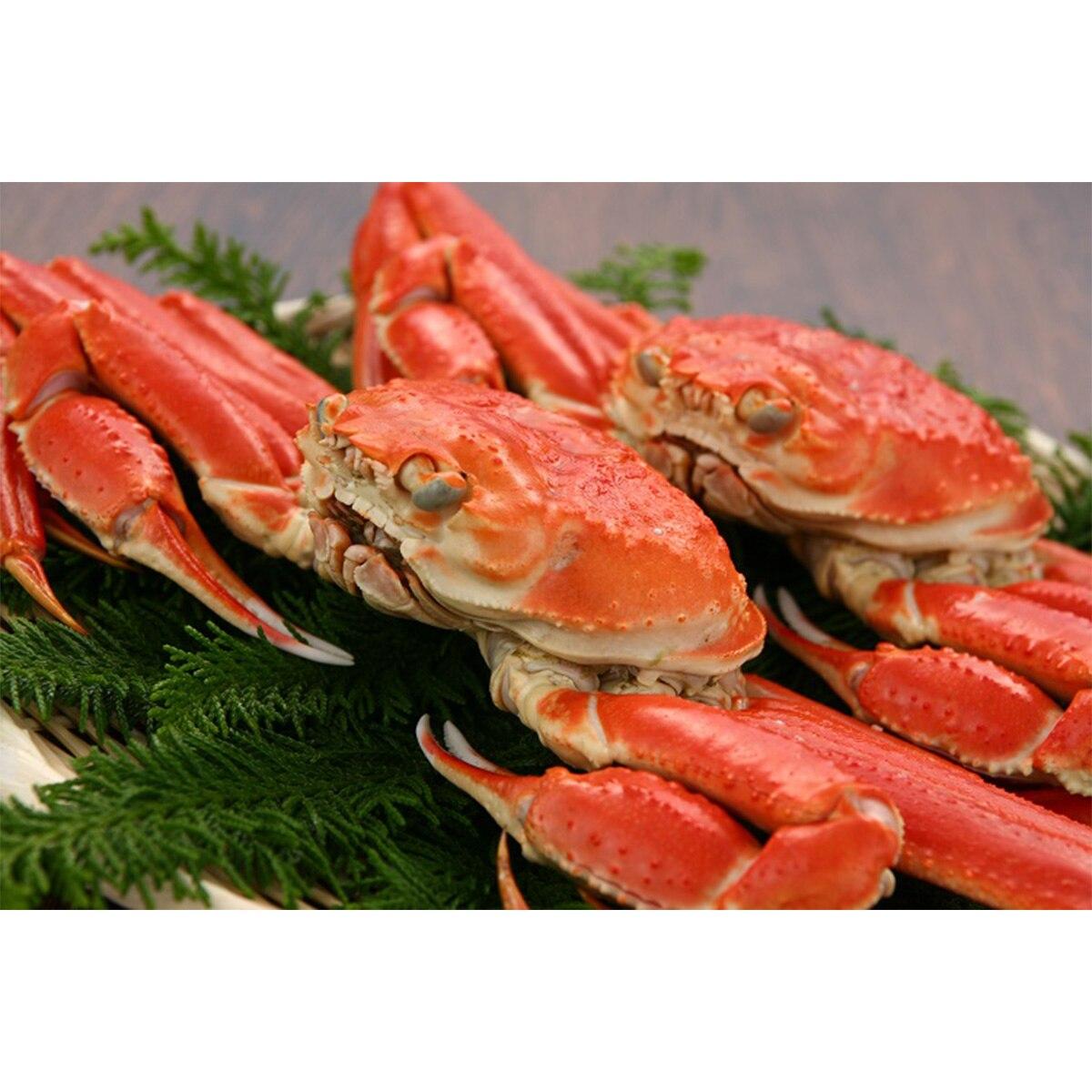 【送料無料】株式会社キングマカデミアンJAPAN ずわい蟹(2杯)